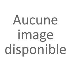 CYLINDRE BOOSTER /APPRILIA SR 93 D : 40 POLINI ORIGINE